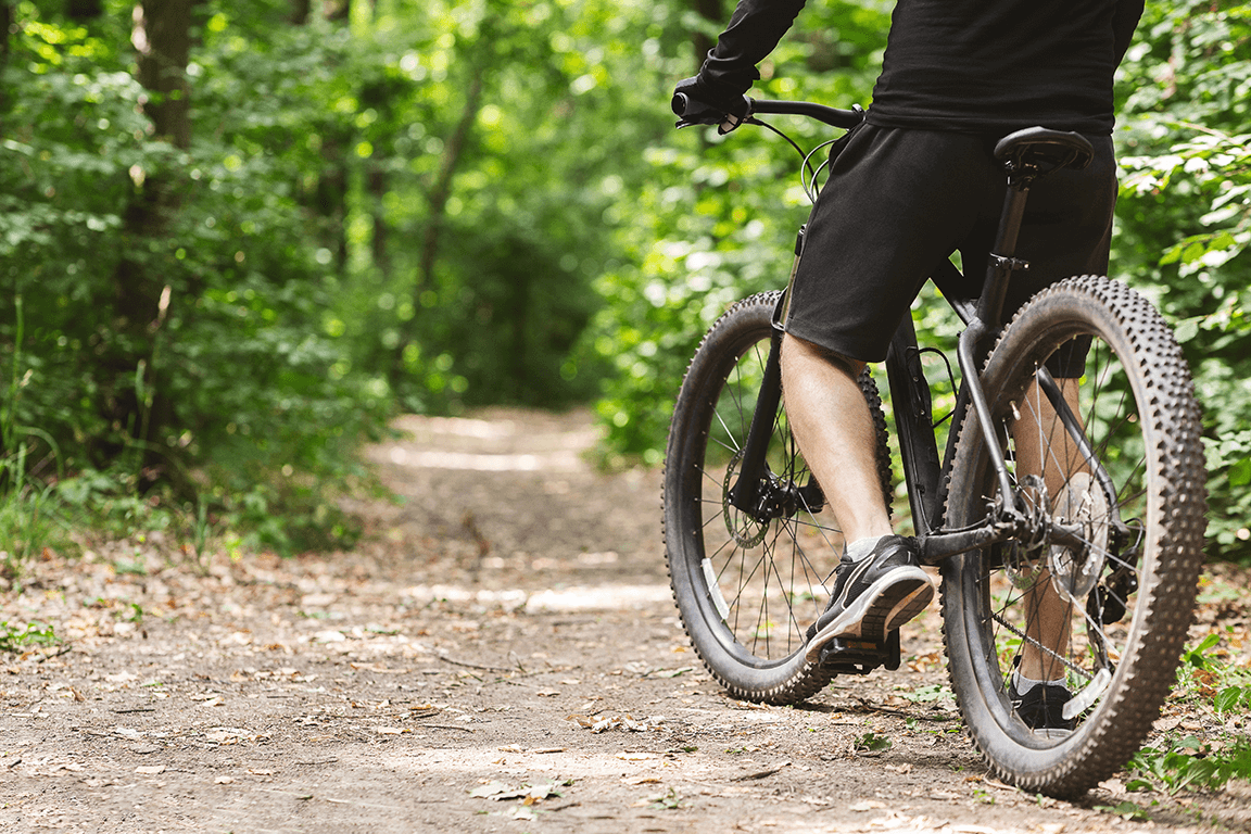 Man on a bicycle stopped on a dirt bicycle track that meanders through the trees