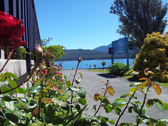View from Edgewater motel with roses in the foreground and Lake Te Anau in the background