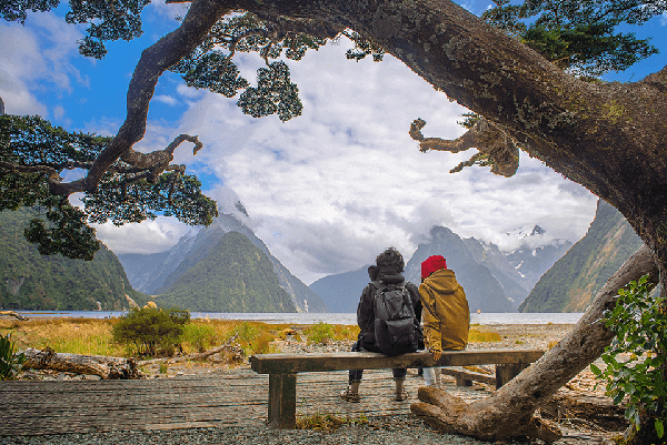 A couple on a bench seat gazing at Mitre Peak over the waters of Milford Sound