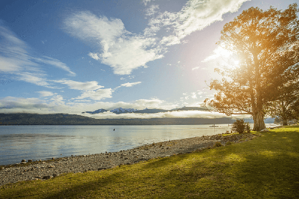 Lake Te Anau scene with beach and sun shining through tree