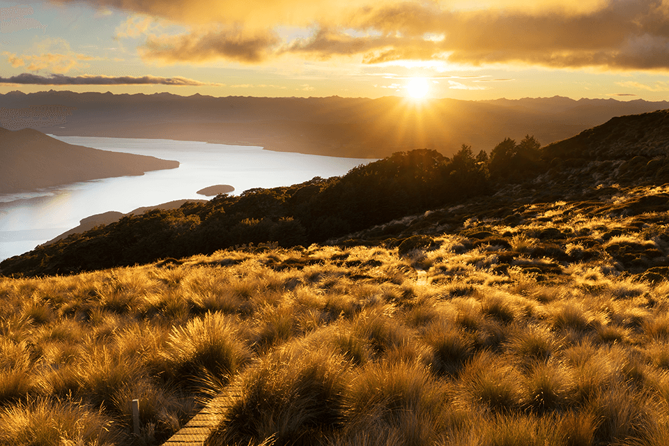 Sunrise vista of the view from Mount Luxmore looking down into the South Arm of Lake Te Anau